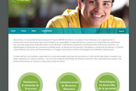 metas homepage